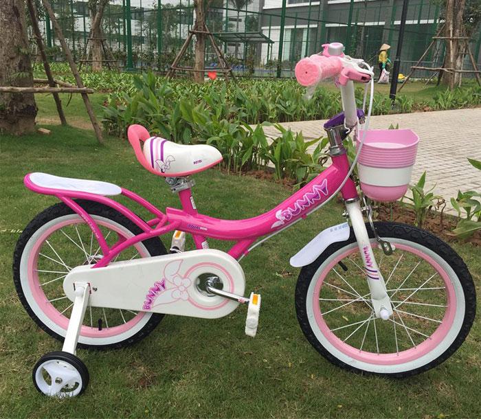 Xe đạp trẻ em Royal Baby Bunny G-4 4